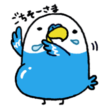 Parakeet INCOCO sticker #448736