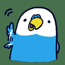 Parakeet INCOCO sticker #448740