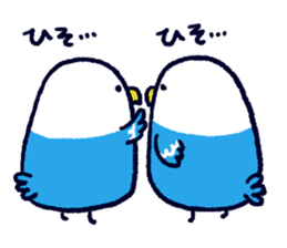 Parakeet INCOCO sticker #448744