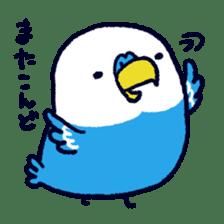 Parakeet INCOCO sticker #448749
