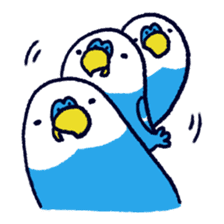 Parakeet INCOCO sticker #448754