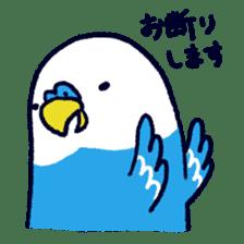 Parakeet INCOCO sticker #448757