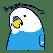 Parakeet INCOCO sticker #448759