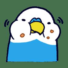 Parakeet INCOCO sticker #448761