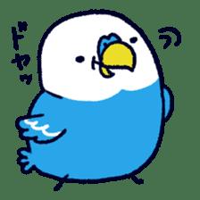Parakeet INCOCO sticker #448765