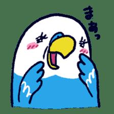 Parakeet INCOCO sticker #448766