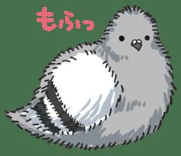LOVE pigeons sticker #450990