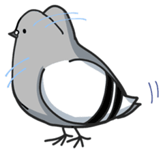 LOVE pigeons sticker #450993