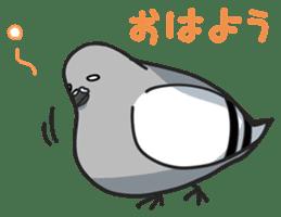 LOVE pigeons sticker #451015