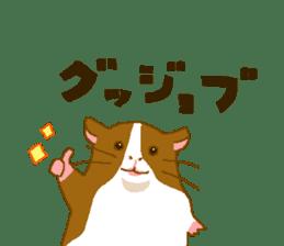 Guinea pig sticker #453886