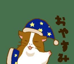 Guinea pig sticker #453892