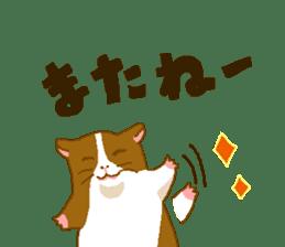 Guinea pig sticker #453903