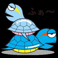 Turtle's Life