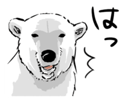 The plump polar bear. sticker #460330