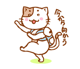 Every day of a cat sticker #460751