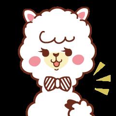 A lovely alpaca