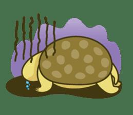 Everyday of tortoises sticker #468244