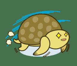 Everyday of tortoises sticker #468245