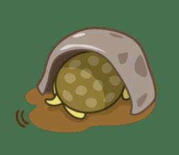 Everyday of tortoises sticker #468246