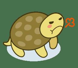 Everyday of tortoises sticker #468247