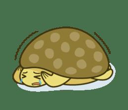 Everyday of tortoises sticker #468249