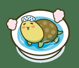Everyday of tortoises sticker #468251