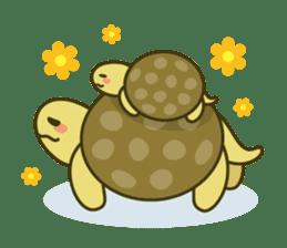 Everyday of tortoises sticker #468254