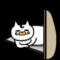 bigwig cat