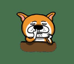 Shiba Dog PanPan's normal life sticker #474062