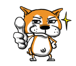 Shiba Dog PanPan's normal life sticker #474070