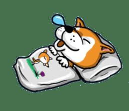 Shiba Dog PanPan's normal life sticker #474086