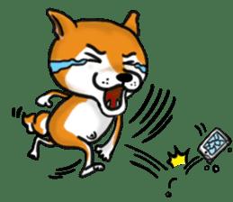 Shiba Dog PanPan's normal life sticker #474087