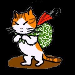 Uni of the cat