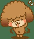 Kawaii Dog - Toy Poodle sticker #475314