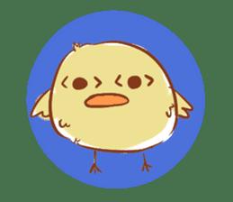 chicks sticker #488090