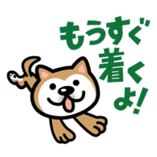 Shiba Inu (native japanese dog) sticker #492287