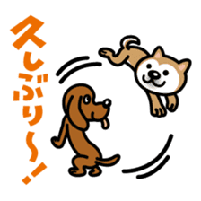 Shiba Inu (native japanese dog) sticker #492290