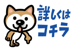 Shiba Inu (native japanese dog) sticker #492293