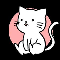 Unrestrained cat