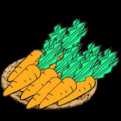 TEAM Carrot