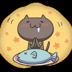 Kuro the cat