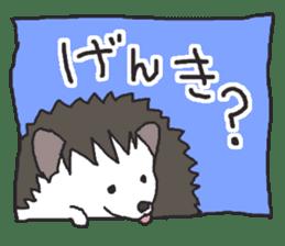 Hedgehogs Haribo family Japanese Ver. sticker #531258