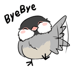 Java sparrow brother sticker #533035