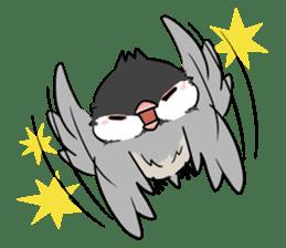 Java sparrow brother sticker #533039