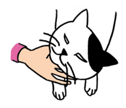 hard boiled cats sticker #534667