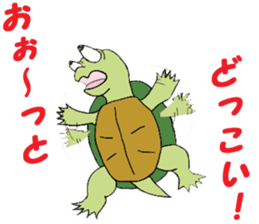 The private life of a pleasant tortoise sticker #539578
