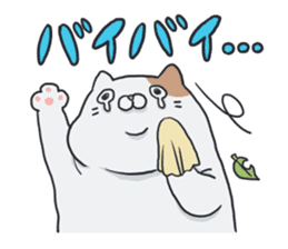 daraneko sticker #539848