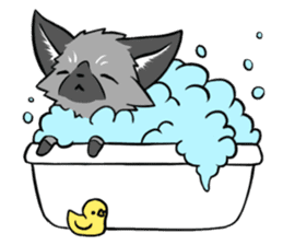 Silver Fox sticker #544981