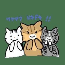 hijiki san sticker #545854