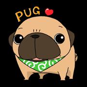 สติ๊กเกอร์ไลน์ pug stamp